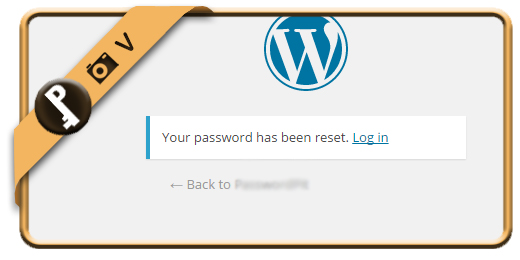 forgot wordpress password 6